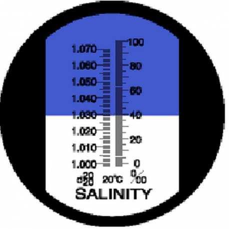 Réfractomètre Sel RHS 10 ATC